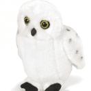 Snowy Owl from RSPB